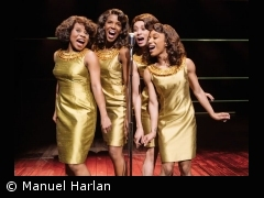 Tickets Tina - Das Tina Turner Musical in Stuttgart